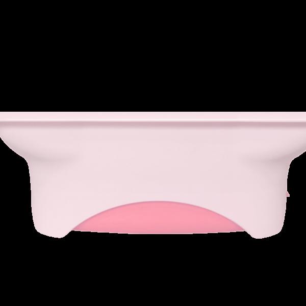 小粉红背后